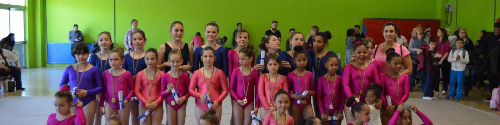 Exhibiciones – Actividades APYMA – Curso 2015/2016.